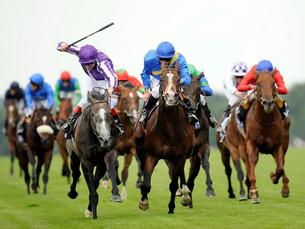 How Handicapping Can Increase The Chances of Winning Bets in a Race Track