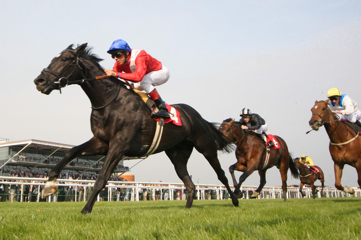 How to Survive The Gold Cup at The Cheltenham Festival