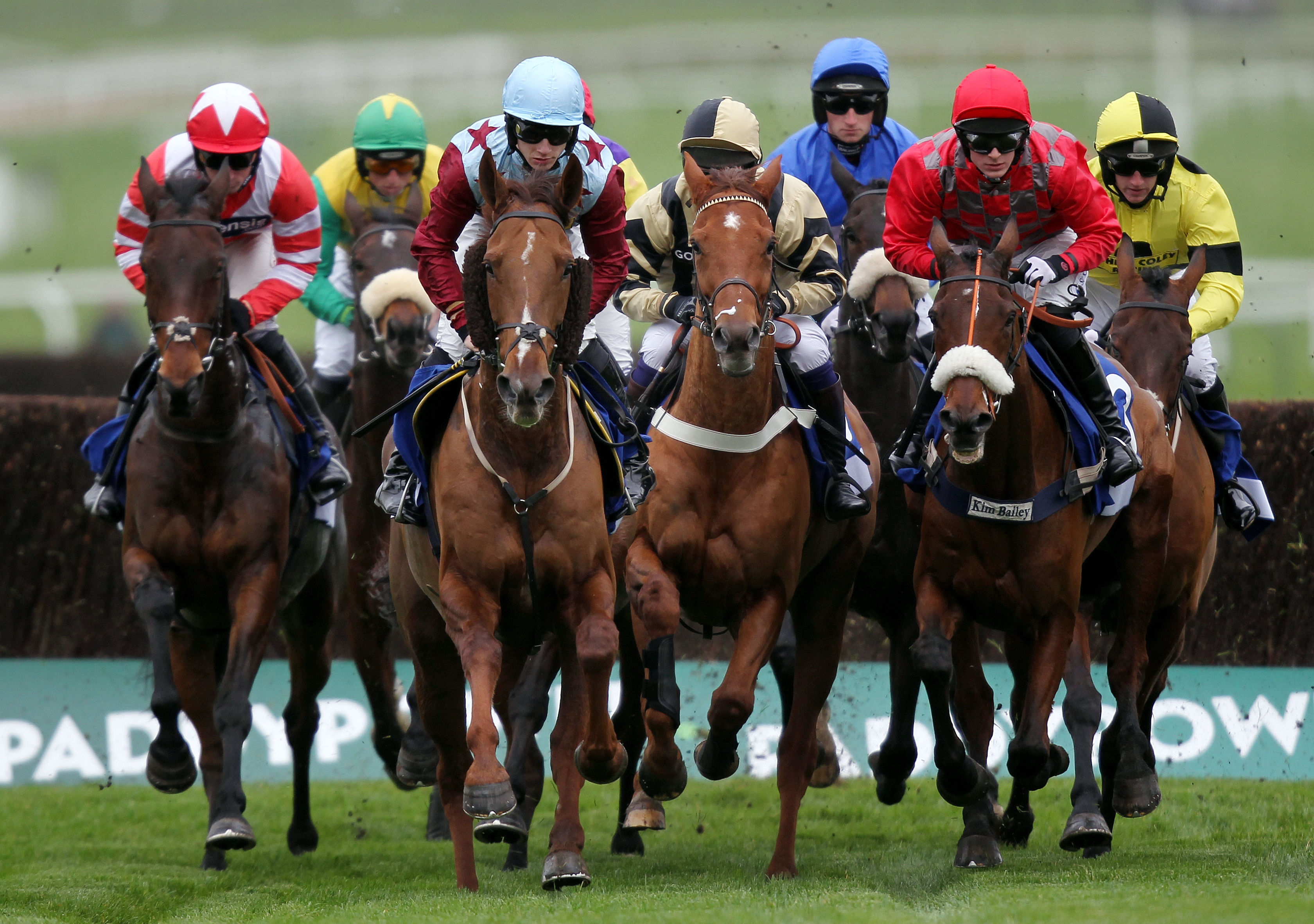 Why Specialising In Horse Racing Betting Can Be The Key To Success